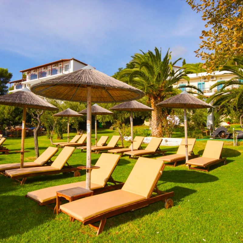 Sun Beds in the Garden at Angeliki Beach Hotel