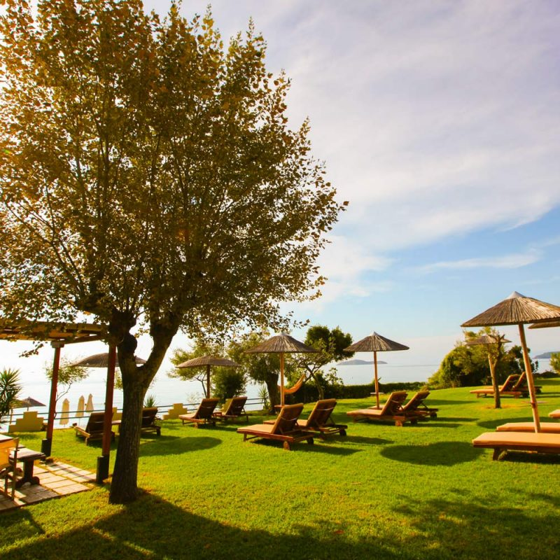 Garden View with Sun Beds - Angeliki Beach Hotel