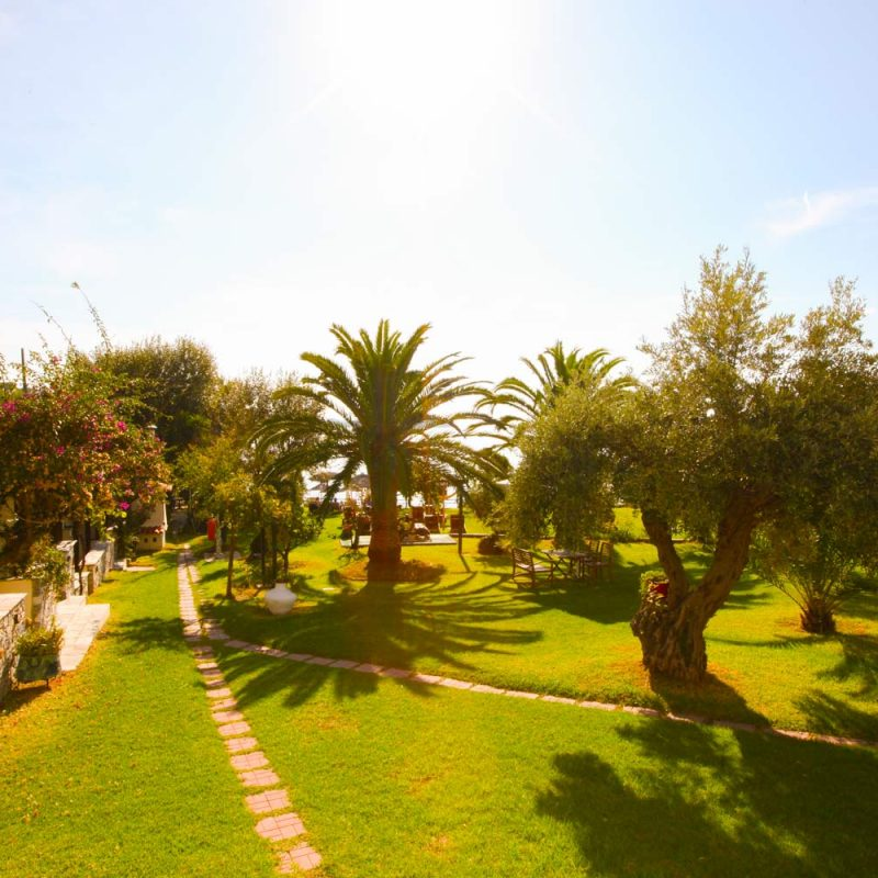 Garden and Path View of Angeliki Beach Hotel